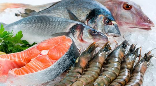 холодильные камеры для заморозки рыбы и мяса Симферополь, Крым - ООО ZimaLeto